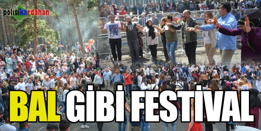 Bal gibi festival
